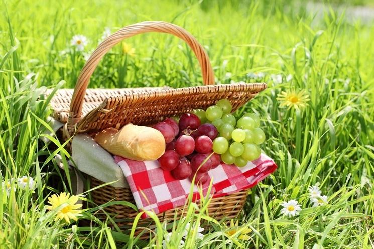 Что нужно брать на пикник